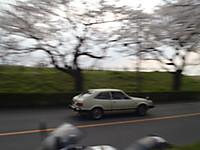 P3220035_3