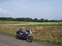 Minasan4_4